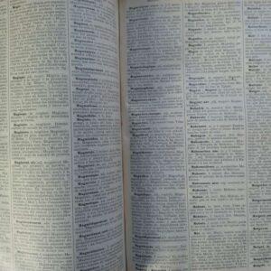 Nuevo diccionario Francés – Español