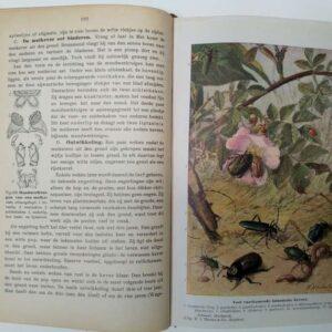 Beknopt leerboek der dierkunde door Dr. O. Schmeil